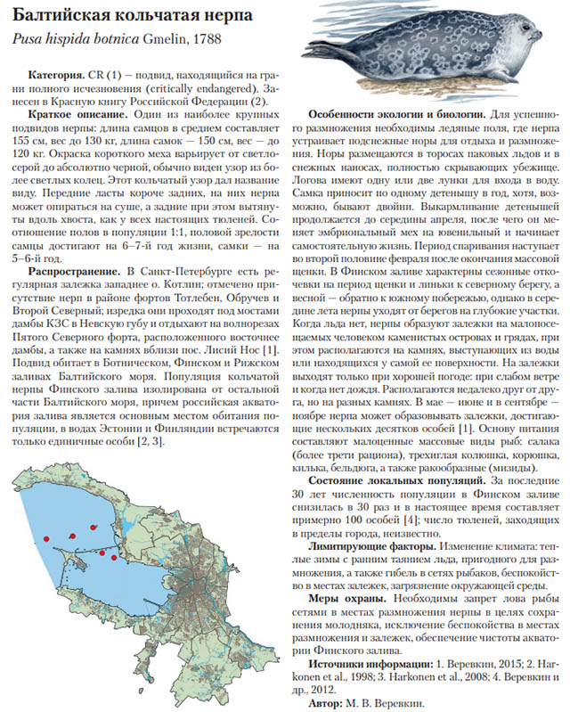 Издана Красная книга Санкт-Петербурга