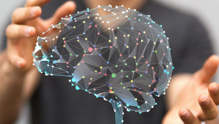 Мозг1