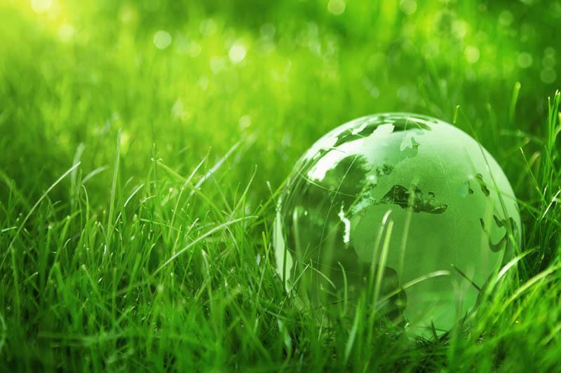 ЗеленаяПланета1